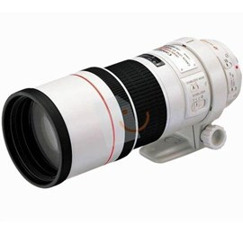 Canon EF 300mm f/4L IS USM Lens